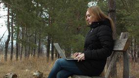 Girl with laptop on a park bench in a forest on a background of trees. work in the open air. autumn forest.  stock video footage