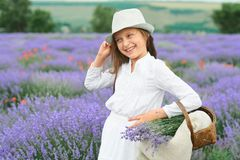 Girl is in the lavender field, beautiful portrait, white dress, summer landscape Royalty Free Stock Photography