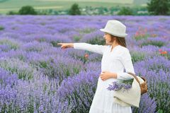 Girl is in the lavender field, beautiful portrait, white dress, summer landscape Royalty Free Stock Images