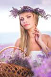 Girl on the lavender field Stock Photos