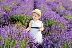 Girl in lavender field Royalty Free Stock Photo