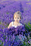 Girl  in lavender field Stock Image