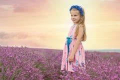 Girl among lavender fields Stock Photos
