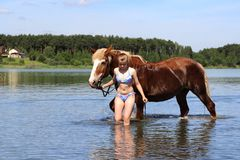 The girl lead the horse into the lake. Stock Images