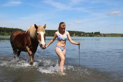 The girl lead the horse into the lake. Royalty Free Stock Photography