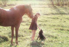 Girl leads her horse and stroking black dog