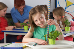 Girl learning about plants in school class Royalty Free Stock Photos