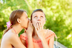 Girl learns a secret. And is pleased with delight Royalty Free Stock Photo