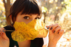 Girl and leaves. Woman hides the face behind autumn leaves Stock Images