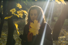 The girl and leaves Royalty Free Stock Image