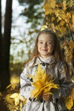Girl in leaves autumn Royalty Free Stock Photography