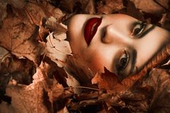 Girl among leaves Royalty Free Stock Images