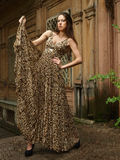Girl in leopard dress Royalty Free Stock Images