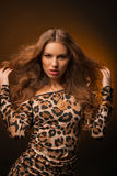 Girl in leopard dress and black shoes on brown background Royalty Free Stock Images