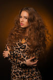 Girl in leopard dress and black shoes on brown background Stock Image