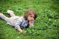 Girl lie on summer or spring meadow. Girl relax on green grass Stock Photos