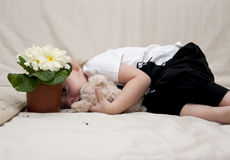 Girl lies on a sofe hides behind the flower pot Stock Image