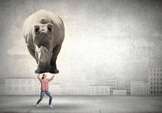 Girl lifting rhino royalty free stock photography