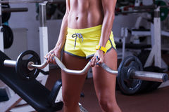 Girl lifting weights Stock Image