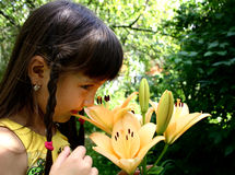Girl and lily. Garden, flowers, girl royalty free stock photography