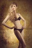 Girl with lingerie and perfect body Royalty Free Stock Photos