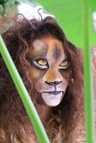 Girl with lion face bodypaint. Girl bodypainted as lion in the dutch city amsterdam to promote the world wildlife day Royalty Free Stock Photography