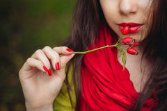 Girl lips and brier Royalty Free Stock Photography