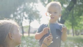 Girl and little boy blowing dandelion. Beautiful cute two childs in sunny day at green nature background. Girl and little boy blowing dandelion. Beautiful cute stock footage