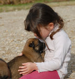 Girl and little dog. A little girl kissing her baby purebred belgian shepherd Stock Photography