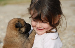 Girl and little dog. A little girl kissing her baby purebred belgian shepherd Royalty Free Stock Photography