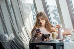 Girl with little dog drinking a latte in a caf? and looking at smartphone royalty free stock photo