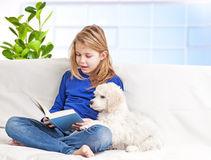 Girl and little puppies Stock Photos