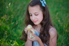 Girl with little yellow duckling in summer Park Royalty Free Stock Image