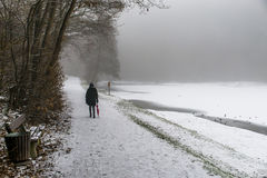 Girl lonely umbrella walking path trees Winter 2 Stock Image