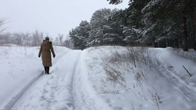 A girl in a long brown coat walks on a snow-covered forest path in winter. Fairy thick forest where it is snowing and covers the branches of trees and pines stock video