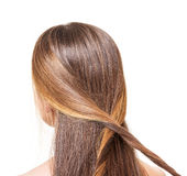 The girl with long brown hair braided strands of isolated. The girl with long brown hair braided strands of isolated on a white background stock images