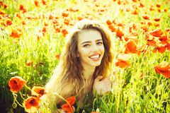 Girl in field of poppy seed royalty free stock images