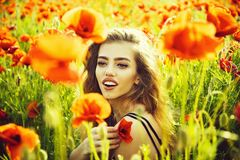 Girl in field of poppy seed stock photos