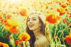 Girl in field of poppy seed royalty free stock photo