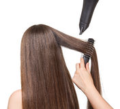 Girl with long hair, comb, hairdryer in hands hairdresser isolated. stock images