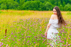 Girl with long hair in a field with purple flowers Royalty Free Stock Photography