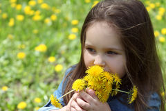 Girl with long hair smelling dandelion in spring Royalty Free Stock Images