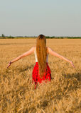 Girl with long hair standing with her back to the wheat field outstretched hands Royalty Free Stock Photo