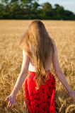 Girl with long hair standing in a wheat field with his back, in the rays of the evening sun Stock Photos