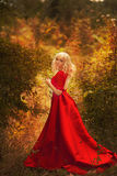 Girl in a long red dress  in the autumn forest Royalty Free Stock Photography