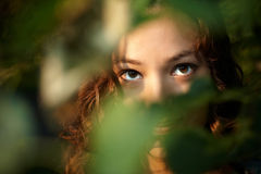 Girl look out from branches Royalty Free Stock Photo