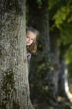Girl looking from behind a tree Royalty Free Stock Photo