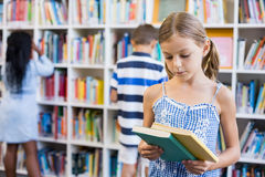 Girl looking at a book in library royalty free stock image