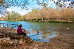 Girl looking at the ducks in Santa Anna lake. A tourist place in the interior of alicante royalty free stock photos
