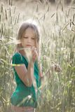 Girl on the field. Girl looking at the ear of wheat on the field royalty free stock image